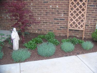 Garden-done